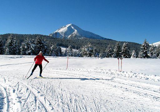 Shock nel mondo dello sci di fondo norvegese: Johaug positiva al doping