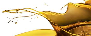 Olio d'oliva bio: è più ricercato e pregiato di molti altri