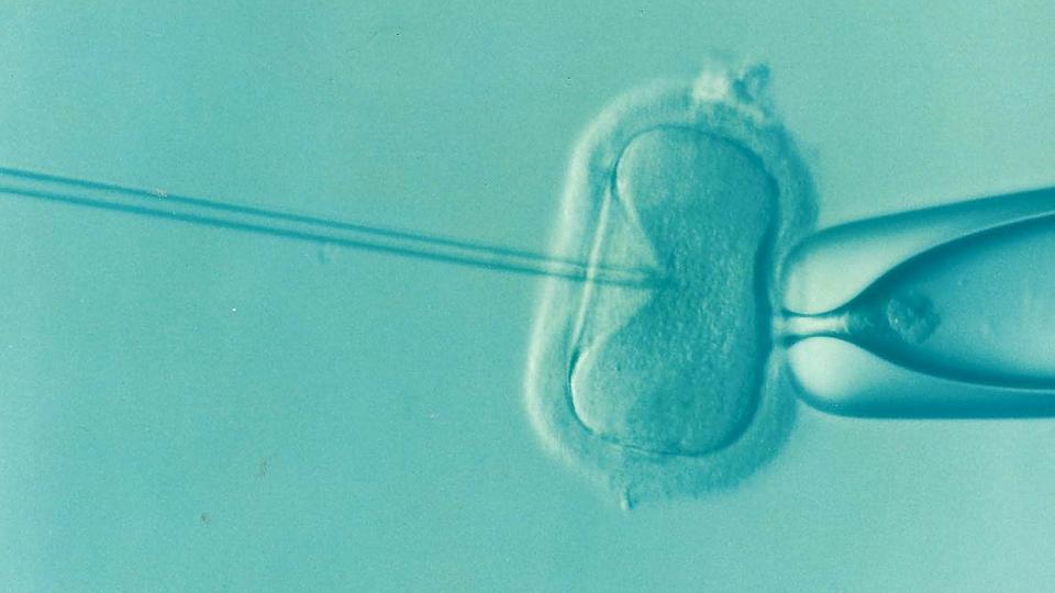 Fertilità: cosa è cambiato nel corso degli ultimi anni