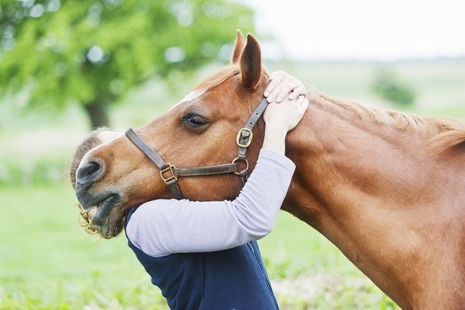 Mi curo di te: un progetto per l'equitazione
