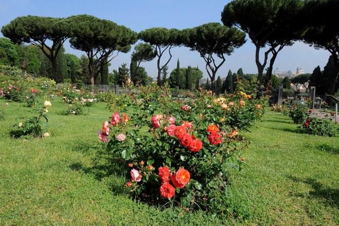 Roseto Comunale di Roma: riaprono i cancelli